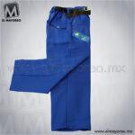 pantalon-boxer-escolar-golden-azul-rey